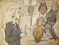 Luna in the Owlery