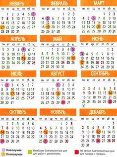 Календарь посадки рассады на 2019-й год Farm Gardens, Man, Gardening Tips, Diy And Crafts, Soda, Notebook, Decor, Flowers, Beverage