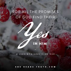 He always keeps His promises. All fulfilled as Yes in Jesus.