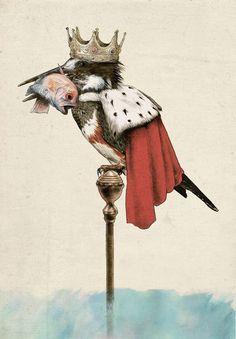 Картинки по запросу зимородками от SUZAN VISSER