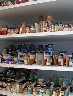 A Short History Of A Pigment Collection (and Art Conservation In The United  States)