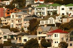 wellington art icons - Mount Victoria houses clustered on the hillside.