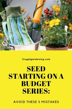 Seed Starting on a Budget Series: Avoid These 5 Mistakes - Frugal Gardening Free Groceries, Save Money On Groceries, Shopping Coupons, Grocery Coupons, Organic Gardening, Gardening Tips, Cold Hard Cash, Extreme Couponing, Build Your Brand
