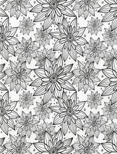 Floral Wonders Color Art for Everyone Adult Coloring Book