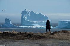 """Video """"Thung lũng băng"""". Thị trấn Ferryland bé nhỏ ở Canada bất ngờ trở thành địa điểm thu hút đông đảo khách du lịch tìm đến vì một hiện tượng thiên nhiên kì thú: núi băng xuất hiện. Nhiều người dân ở đây đã không khỏi bất ngờ khi sáng thức dậy và thấy một núi băng sừng sững, cao...  http://cogiao.us/2017/04/20/mo-cua-nha-giat-minh-thay-nui-bang-moc-sung-sung-truoc-mat/"""
