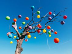 Carl Kleiner. (Tree) made of imagination
