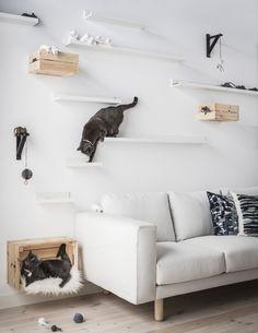 En casa todos disfrutan del diseño sueco.