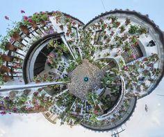 Patio de la calle Martin de Roa,7.- Patio típico encuadrado dentro de la modalidad de Arquitectura Antigua. Atravesada la cancela de entrada, que hay junto a la puerta, penetramos en el patio; su zaguán sirve de entrada también al patio vecino, el número 9 de la misma calle. Para realizar un visita virtual a este patio haga clic aqui: www.tour360.es/cordoba/martinderoa7/