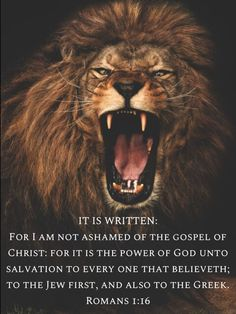 Romans For I am not ashamed of the gospel of Christ: for it is the power of God unto salvation to every one that believeth; Lion Of Judah Jesus, Judah And The Lion, Spiritual Warrior, Prayer Warrior, Spiritual Reality, Bible Qoutes, Bible Verses, Bible 2, Biblical Verses