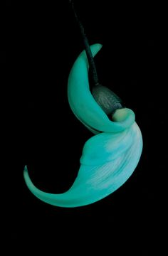 Jade vine (Strongylodon macrobtrys) This large tropical vine is a member of the pea family. Clusters of more than 100 striking turquoise flowers hang down as much as three feet. In its native Philippines, bees pollinate the vine's flowers.  Jonathan Singer
