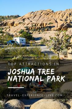 Top Attractions in Joshua Tree National Park, California - Joshua Tree Highlights