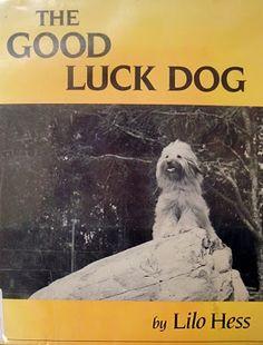 Hounds In Print: Breed - Tibetan Terrier