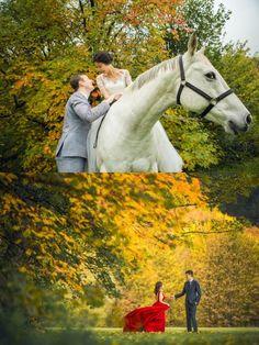 Autumn Pre-Wedding Photoshoot In New Zealand   OneThreeOneFour (WS)