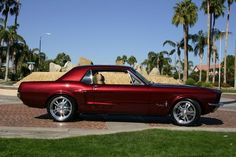 pictures of 68 show mustangs coupe | ... Ford Mustang StreetShow Coupe Best in Show 302 4v V8 5Speed Racing