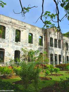 Farley Hill National Park is another fascinating stop when touring We love the incredible views, historic ruins, towering trees and beautiful flowers. Barbados, Beautiful Things, Beautiful Flowers, Little England, British Guiana, Bridgetown, Caribbean Food, West Indian, Happy Independence