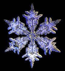 Image result for masaru emoto water crystals photos