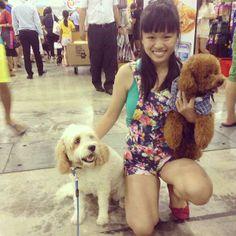Pet Expo Singapore with Jet Cavoodle via myoodle.com