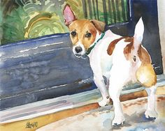 Jack Russell Terrier Art Print of Original by dogartstudio on Etsy
