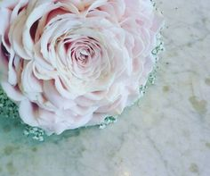 33593304_2130759307157539_6329896571479523328_n Flower Studio, Rose, Party, Flowers, Wedding, Decorations, Casamento, Pink, Roses