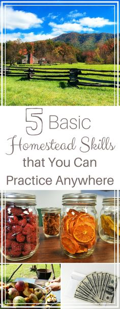 Are you homestead dreaming? That dream might be closer than you think! Find out what homestead skills you can start practicing NOW, no matter where you are!