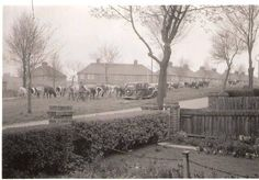 Cattle being driven up Ruscote Ave, Banbury,Oxon in early British History, Old Town, London, Cattle, Places, Outdoor, Memories, People, Old City