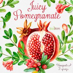 Pomegranate Watercolor Bouquets Hand Drawn Clip Art. Red fruit. Wall art. Digital png, DIY invites, scrapbooking, wedding invitations