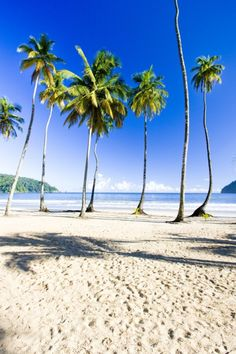 One of the many beautiful beaches in Trinidad & Tobago.