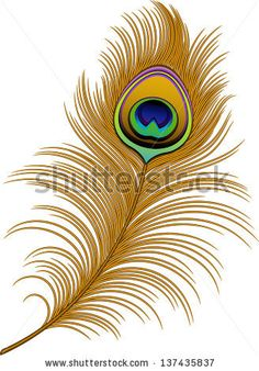 Peacock Feather vector image on VectorStock Clip Art Plume, Feather Clip Art, Peacock Feather Tattoo, Feather Drawing, Feather Vector, Feather Tattoos, Peacock Feathers Drawing, Peacock Vector, Bird Tattoos