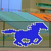 This Mustang Put In Cup Set includes everything you need to make this amazing chain-link fence design. Stumps Party, Basketball Design, Link Art, Pep Rally, Chain Link Fence, Cup Art, School Events, Fence Design, Cupping Set