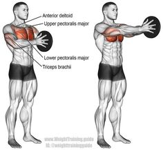 A compound push exercise. Main muscles worked: Lower Pectoralis Major, Upper Pectoralis Major, Anterior Deltoid, and Triceps Brachii. Fitnessübungsplan Svend press exercise instructions and video Fitness Workouts, At Home Workouts, Fitness Tips, Fitness Motivation, Health Fitness, Body Workouts, Fitness Style, Enjoy Fitness, Swimming Workouts