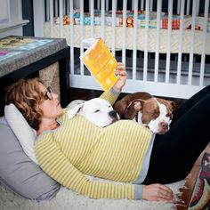 Ready for baby? preparing your Fur Children for Baby Arrival.  Good post.