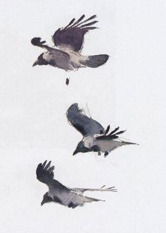 Crows - Lars Jonnson