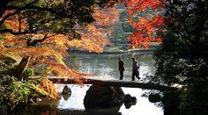 Những điểm đến mùa thu ở Nhật khiến du khách mê mẩn  Dân trí Từ tháng 9 đến tháng 11, khắp nơi trên đất nước mặt trời mọc tràn ngập sắc vàng, sắc đỏ của lá phong. Đây là nơi lý tưởng để tận hưởng cảnh sắc thiên nhiên êm đềm và vô cùng ấn tượng.   #dulichvietnam #24hdulich #tintucdulich #sotaydulich #camnangdulich