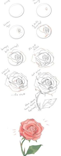 How to draw flowers and turn these drawings into really cool wall art - Craft-Mart artdrawings how to draw a rose step by step drawing guide Learn how to draw flowers like roses of lilies and turn them into really beautiful wall art drawings howtodraw # Rose Step By Step, Step By Step Drawing, Easy Drawings, Pencil Drawings, Flower Drawings, Pencil Art, Cool Wall Art, Learn To Draw, Types Of Art