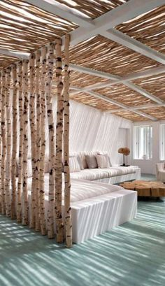 claustra-tronc-arbre