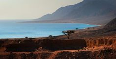 The neighborhood of the village of Nuweiba, early morning on the shore of the Gulf of Aqaba.