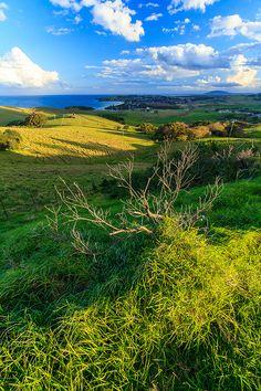 South Coast Pastures, Gerringong, New south Wales - Australia. Australia Funny, Australia Travel, Australia Photos, Tasmania, Beautiful World, Beautiful Places, South Coast Nsw, Australia Landscape, Australian Photography