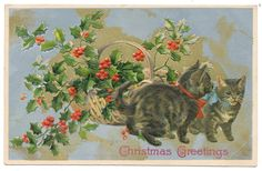 Helena Maguire - Winsch Christmas Cats Tip Over Holly Basket