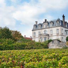 France, Burgundy, Mercurey | Accommodation Code: FR4509.101.1