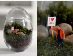 Google Image Result for http://www.alionthego.com/wp-content/uploads/2012/01/twig-terrarium.png