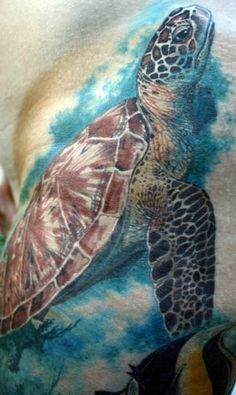 Super realistic watercolor sea turtle tattoo - Tattooimages.biz: