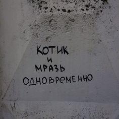 Стена говорит в Твиттере: «https://t.co/CO3uxXyuos»