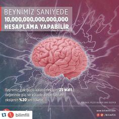 #beyin #bilim #brain #science #neurology #nöroloji