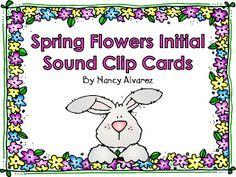 Free ELAR Downloads - Teaching with Nancy   Teaching with Nancy