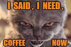 ☕ Need Coffee Memes Men Coffee, Coffee Talk, Coffee Is Life, Coffee Love Quotes, Coffee Sayings, Funny Arabic Quotes, Funny Quotes, Coffee Jokes, Funny Coffee