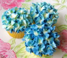 Buttercream Hydrangea Cupcake Tutorial from Rosie Cake Diva. For cake decorating…