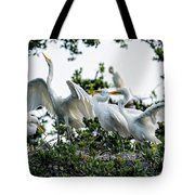Mom Teaching Her Chicks  Tote Bag by Bill And Deb Hayes
