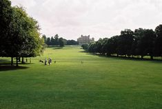 WOLLATON DEER PARK Kodak Gold, Deer Park, Film Camera, Golf Courses, Board, Places, Blog, Movie Camera, Blogging