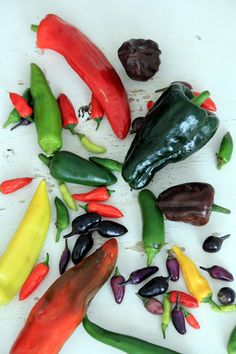 Health benefits of chilies