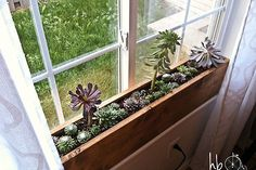 How To Make A Succulent Window Box, Flowers, Gardening, Succulents,  Woodworking Projects
